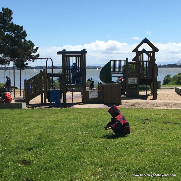 BERKELEY-Shorebird Park Nature Center-playground 1-c2017 Carole Terwilliger Meyers-600pix