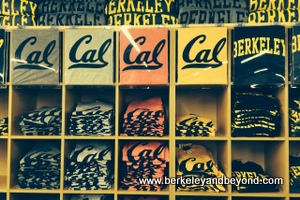BERKELEY-U.C. campus-Cal Student Store-shirts-c2014 Carole Terwilliger Meyers-iPhone-CROP-300pix