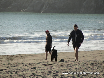 MUIR BEACH-Couple With Dog-12-11-400pix(c2011CaroleTerwilligerMeyers)