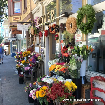 SF-Noe Valley-Flowers of the Valley-exterior-c2016 Carole Terwilliger Meyers-400pix