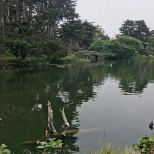 SF-Golden Gate Park-Stow Lake 2-c2018 Carole Terwilliger Meyers-300pix