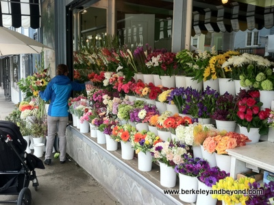 SF-Union Street-Flower Stand-5-12-400pix(iPhone-c2012CaroleTerwilligerMeyers)
