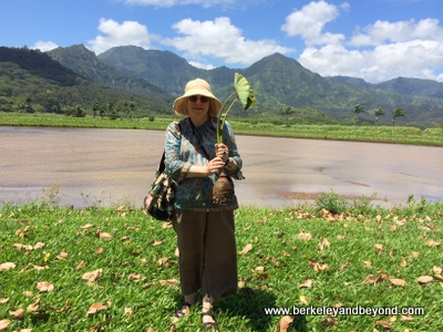 Kauai-Hanalei-Taro Farm tour-Carole+taro mother-2-c2014-iPhone-fnl-400pix