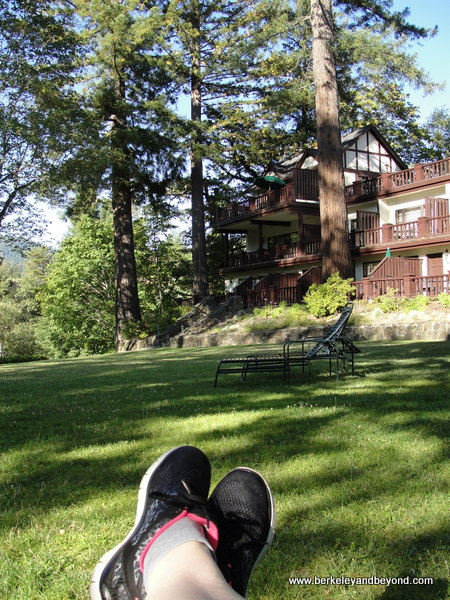 23-toes-U.S.-California-Garberville-Avenue of Giants-Benbow Historic Inn-c2015 Carole Terwilliger Meyers