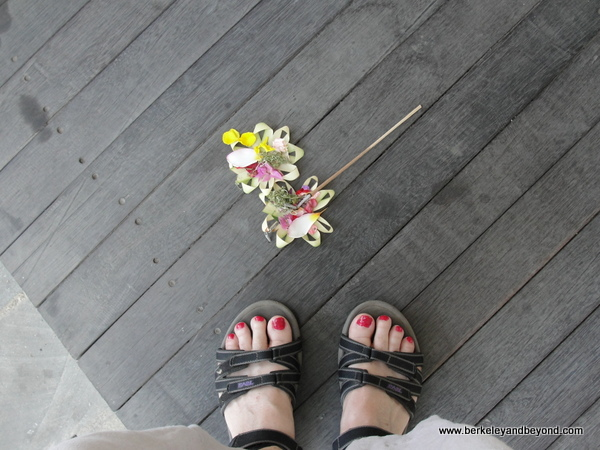 24. toes-Indonesia-Bali-Taman Nusa cultural park-ground offering+toes-c2015 Carole Terwilliger Meyers-600pix